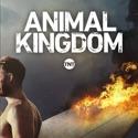 Animal Kingdom, Season 2 watch, hd download