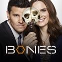 Bones, Season 12 cast, spoilers, episodes, reviews