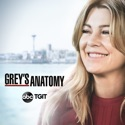 Grey's Anatomy, Season 15 watch, hd download