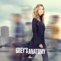 Grey's Anatomy, Season 16 watch, hd download