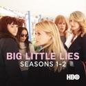 Big Little Lies, Seasons 1-2 cast, spoilers, episodes, reviews