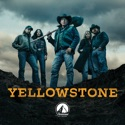 Yellowstone, Seasons 1-3 cast, spoilers, episodes, reviews