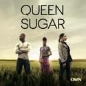 Queen Sugar, Season 1 cast, spoilers, episodes, reviews