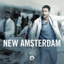 New Amsterdam, Season 1 watch, hd download