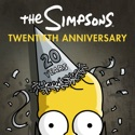 The Simpsons: 20th Anniversary Collection tv series