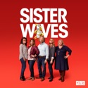 Sister Wives, Season 14 cast, spoilers, episodes, reviews