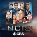 NCIS, Season 17 watch, hd download