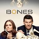 Bones, Season 10 cast, spoilers, episodes, reviews