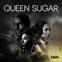 Queen Sugar, Season 2 cast, spoilers, episodes, reviews