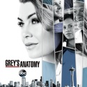 Grey's Anatomy, Season 14 watch, hd download
