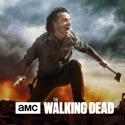 The Walking Dead, Season 8 watch, hd download