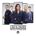 Law & Order: SVU (Special Victims Unit), Season 20 watch, hd download