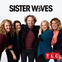Sister Wives, Season 12 cast, spoilers, episodes, reviews