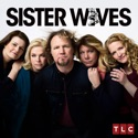 Sister Wives, Season 10 cast, spoilers, episodes, reviews