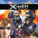 X-Men Anime Series, Season 1 release date, synopsis, reviews