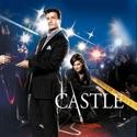 Castle, Season 2 cast, spoilers, episodes, reviews
