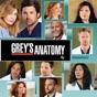 Grey's Anatomy, Season 9