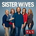 Sister Wives, Season 8 cast, spoilers, episodes, reviews