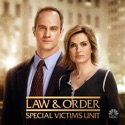 Law & Order: SVU (Special Victims Unit), Season 8 watch, hd download