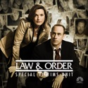 Law & Order: SVU (Special Victims Unit), Season 12 watch, hd download