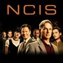 NCIS, Season 7 watch, hd download