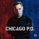 Chicago PD, Season 1 watch, hd download
