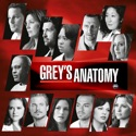 Grey's Anatomy, Season 7 watch, hd download