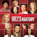 Grey's Anatomy, Season 4 watch, hd download