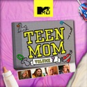 Teen Mom, Vol. 7 watch, hd download