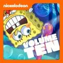 SpongeBob SquarePants, Vol. 10 cast, spoilers, episodes, reviews