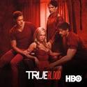 True Blood, Season 4 cast, spoilers, episodes, reviews