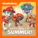 PAW Patrol, Pups Save the Summer! cast, spoilers, episodes, reviews
