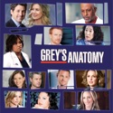 Grey's Anatomy, Season 6 watch, hd download