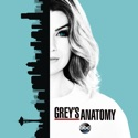Grey's Anatomy, Season 13 watch, hd download