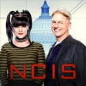 NCIS, Season 14 watch, hd download