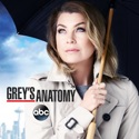 Grey's Anatomy, Season 12 watch, hd download