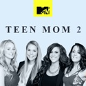 Teen Mom, Vol. 14 watch, hd download