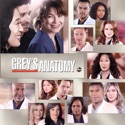 Grey's Anatomy, Season 10 watch, hd download