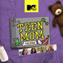 Teen Mom, Vol. 6 watch, hd download