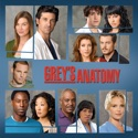 Grey's Anatomy, Season 3 watch, hd download