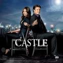 Castle, Season 3 cast, spoilers, episodes, reviews