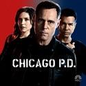 Chicago PD, Season 2 watch, hd download