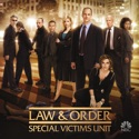 Law & Order: SVU (Special Victims Unit), Season 7 watch, hd download