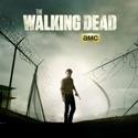 The Walking Dead, Season 4 watch, hd download