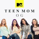 Teen Mom, Vol. 13 watch, hd download