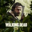 The Walking Dead, Season 5 watch, hd download