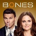 Bones, Season 9 tv series