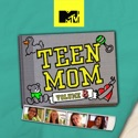 Teen Mom, Vol. 8 watch, hd download