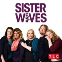 Sister Wives, Season 11 cast, spoilers, episodes, reviews