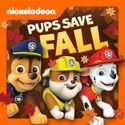 PAW Patrol, Pups Save Fall cast, spoilers, episodes, reviews